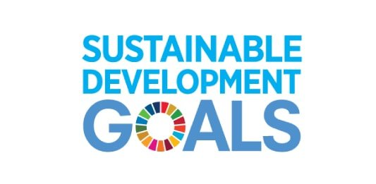 sustainable development goal logo